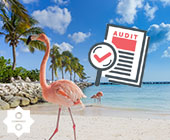 Auditing in the Caribbean: An opportunity of a lifetime